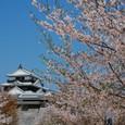 Harushiro01