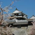 Harushiro03