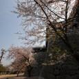 Harushiro08